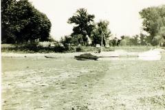 hank-24