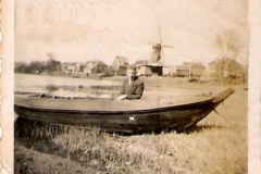hank-37