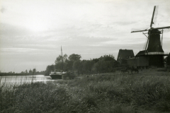 hank-62