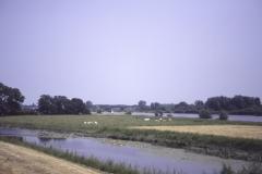 ijsseldijk-265