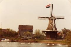 molen-31