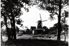 molen-70