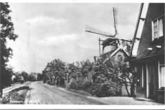 molen-83